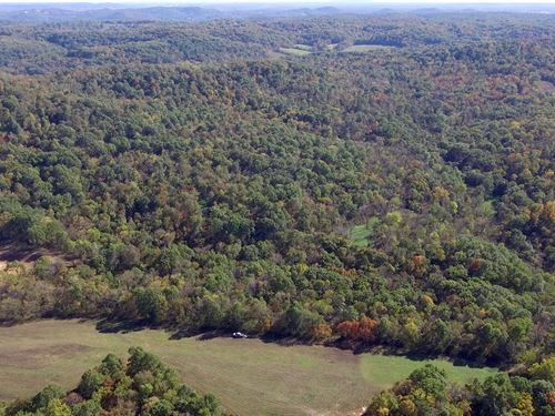 132 Acres Pike Rd 9117 Pike County : Louisiana : Pike County : Missouri