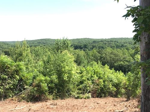 Nice Rolling Tn Land With Views : Sugar Tree : Benton County : Tennessee