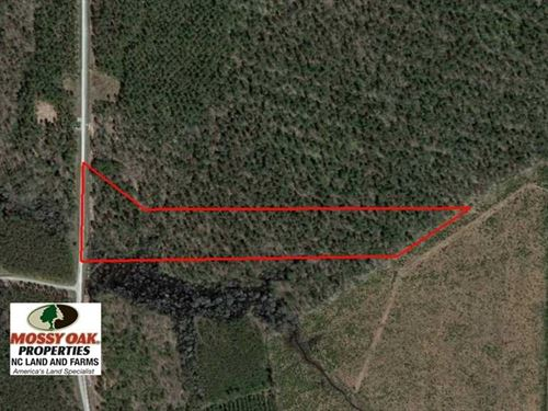 Reduced, 11 Ac Residential Lot WI : Edenton : Chowan County : North Carolina
