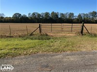 Cattle Ranch With Fantastic Hunting : Bolton : Hinds County : Mississippi