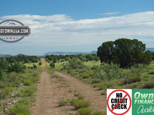 Treed 10 Acre Lot Nw Of Seligman, : Seligman : Yavapai County : Arizona