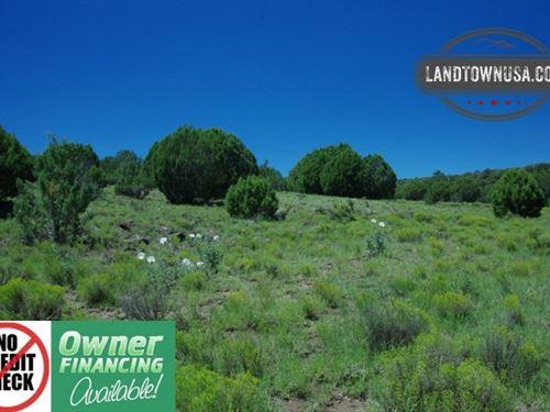 20 Acre Treed Property Next To Stat : Seligman : Yavapai County : Arizona