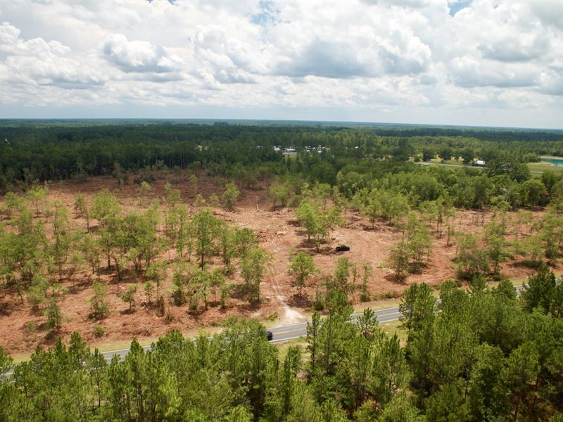 Investment Tract Near Ft Stewart : Ludowici : Long County : Georgia
