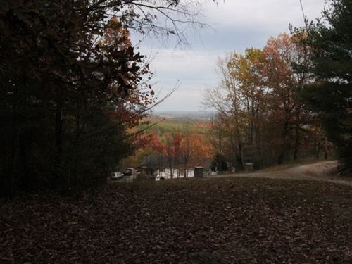 Wooded Tract With View : Independence : Grayson County : Virginia