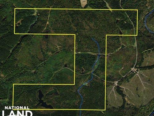 Flat Rock Large Acreage Hunting Lan : Flat Rock : Jackson County : Alabama