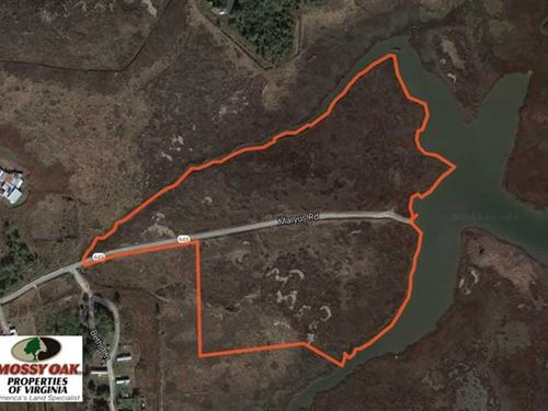 Reduced, 40.75 Acres of Waterfron : Hayes : Gloucester County : Virginia