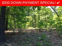 12 Acres, Clearing, Off-Grid : Thomasville : Oregon County : Missouri