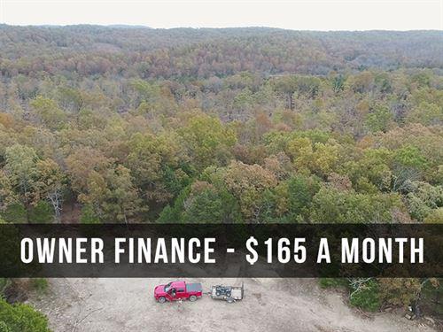 10 Acres With Cedar Grove And Trail : West Plains : Douglas County : Missouri