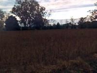 Johnston County, Nc $145,000 Neg : Benson : Johnston County : North Carolina