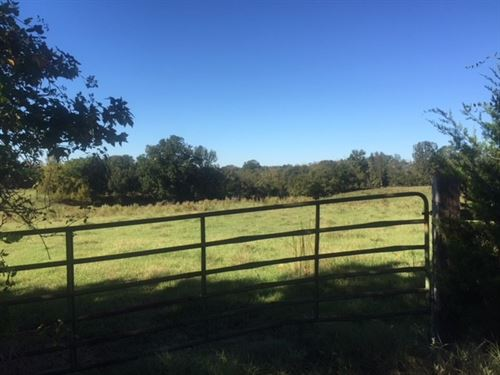 Beautiful Rolling Pasture : Cascilla : Tallahatchie County : Mississippi