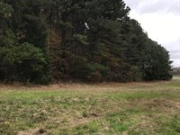 Coldwater Prime Recreational Tract : Coldwater : Tate County : Mississippi