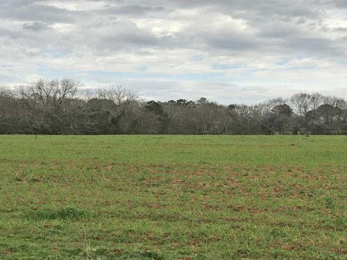 The Flowing Spring Farm : Brundidge : Pike County : Alabama
