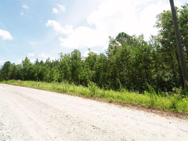 Mature Pines And Hardwoods Ranch For Sale Newborn Morgan County Georgia Ranchflip