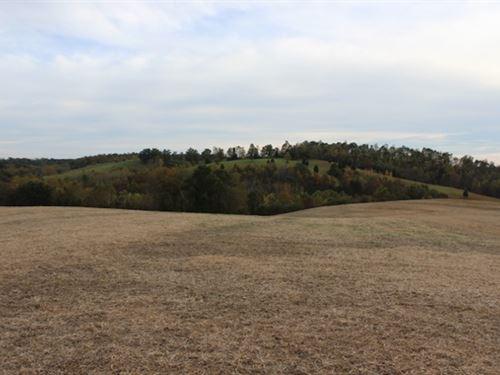 Sam Gilliland Rd - 32 Acres : Oak Hill : Jackson County : Ohio