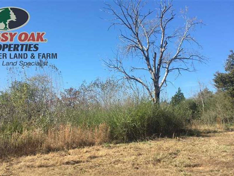 80 Acres on Holmes Road in Sear : Ranch for Sale : Searcy : White