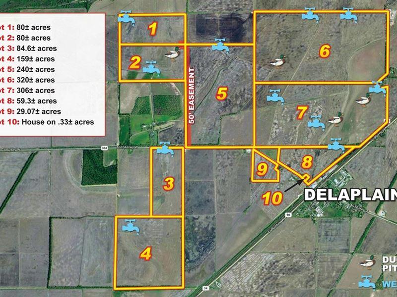 1358 Acre Productive Rice Farm : Delaplaine : Greene County : Arkansas
