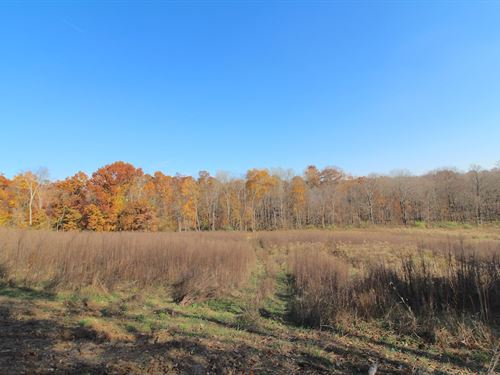 Mt Hope Rd - 22 Acres : Thornville : Licking County : Ohio