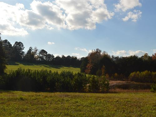 75+/- Ac In Jonesville With 2 Ponds : Jonesville : Union County : South Carolina