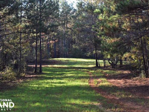 Sipsey Recreation And Timber Tract : Northport : Tuscaloosa County : Alabama