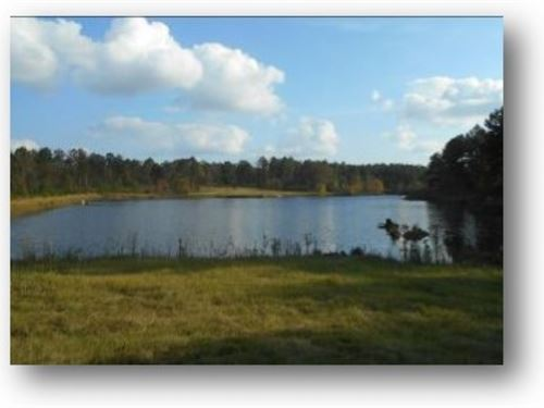 45 Acres Out Of Springwater Ranch : Brandon : Rankin County : Mississippi