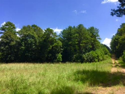 364 Acres Off Hwy 563 : Woodville : Wilkinson County : Mississippi