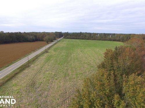 Fourth Street Farming Tract : Hartsville : Darlington County : South Carolina