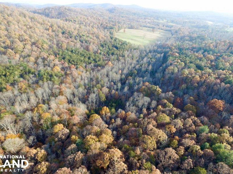 Hunting & Timber Investment : Lenoir : Caldwell County : North Carolina