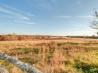 170.76 Acres Of Tn Farmland : Centerville : Hickman County : Tennessee