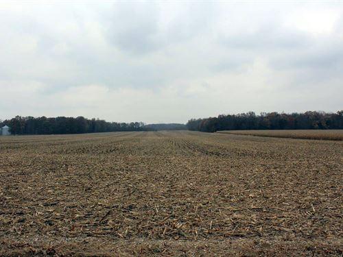 Real Estate Auction In Indiana : Warsaw : Kosciusko County : Indiana