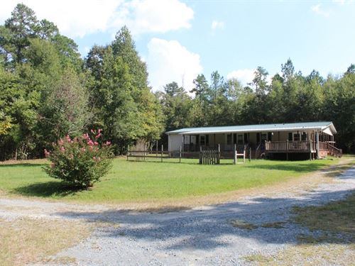 12 Acres In Central North Carolina : Snow Camp : Alamance County : North Carolina