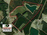 112 Acres of Farm And Recreational : Lumberton : Robeson County : North Carolina