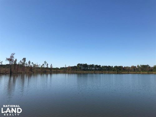 18 Acre Lake Tract : Adrian : Laurens County : Georgia