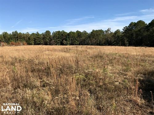 Pine Branch Hunting And Timber Inve : Deer Park : Washington County : Alabama