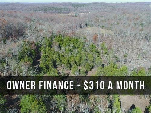 15 Acres W/ Power, Phone, Trees : Drury : Douglas County : Missouri