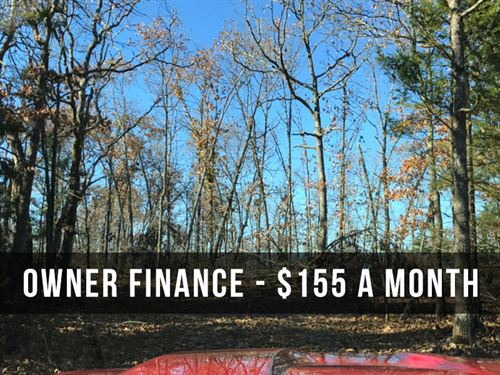 11 Acres With Deer & Close To River : Drury : Douglas County : Missouri