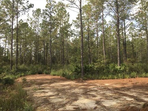 Land For Sale Kingsland, GA : Kingsland : Camden County : Georgia