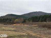 556 Acres Timberland Adjacent to : Caddo Gap : Montgomery County : Arkansas