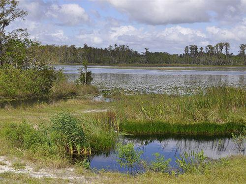Ott Williams Rd Citrus & Lakefront : Clermont : Lake County : Florida