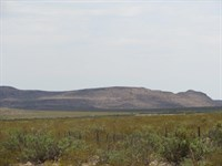 20 Acres On The County Rd, $148/Mo : Sierra Blanca : Hudspeth County : Texas