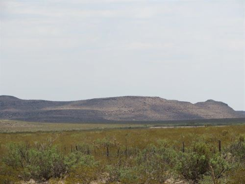 20 Ac Foreclosure Only $147/Mo : Sierra Blanca : Hudspeth County : Texas