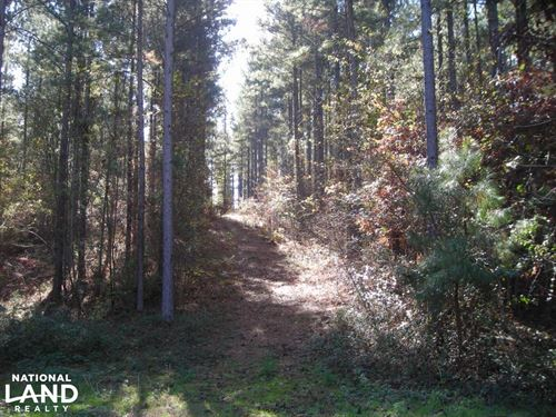 NW Polk Co. Timber Tract 36 Acres : Cedartown : Polk County : Georgia