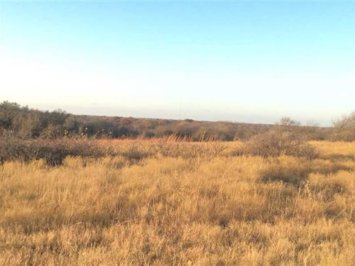 Rolling, Wooded Prairie Land For : Era : Cooke County : Texas