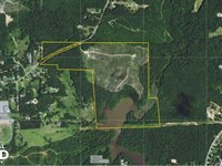 Stevens Lake Investment Opportunity : Temple : Carroll County : Georgia