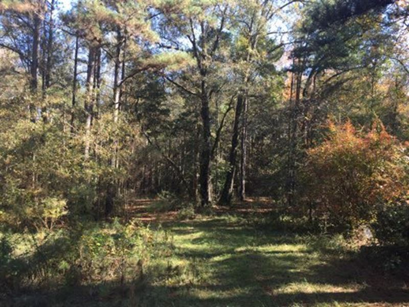Homesite or camp nice 13 acres ranch for sale liberty for Fishing camps for sale in mississippi