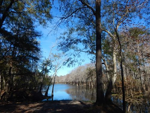 The Great Outdoors : Sandy Hook : Marion County : Mississippi