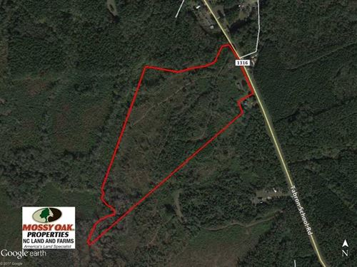 Under Contract, 32 Acre Hunting : Hollister : Halifax County : North Carolina