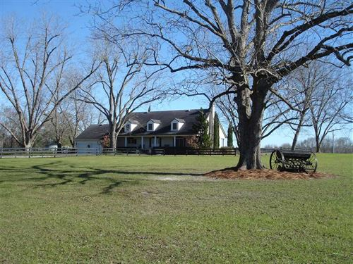 303 Acres With Home in Randolph Co : Cuthbert : Randolph County : Georgia