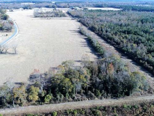 123 Acres of Timber And Farm Land : Glisson : Duplin County : North Carolina