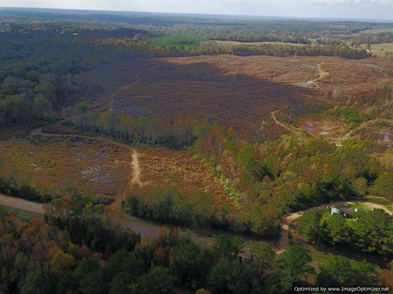 Great Deer Hunting Tract : Hazlehurst : Copiah County : Mississippi