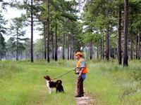 Midway - South Ga Mini Plantation : Newton : Baker County : Georgia